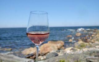 Rosé – Ein Sommertraum
