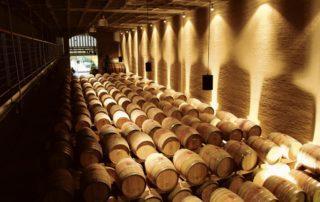 Südafrika stoppt Weinexporte