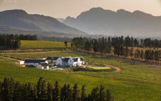 South Africa Brookdale Estate
